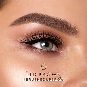 HD Brushed Up brows.jpg