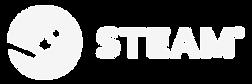 Steam_Logo_Lockups-04.png