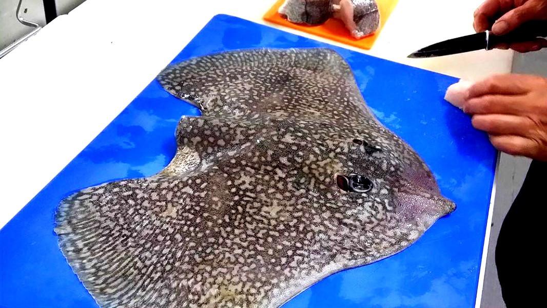 Preparação de peixe