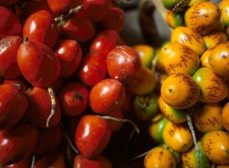 Pejibaye - One of Costa Rica's must-try Ingredients