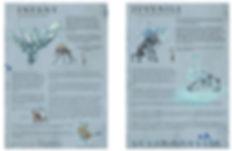 Jacob Gamm concept art & Games design document for DERP Studios. JEJ creature design.