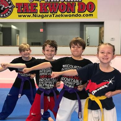Taekwondo After School