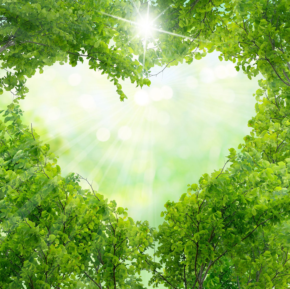 Green leaves in the shape of a heart