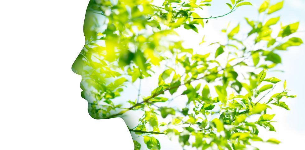 Woman profile with tree foliage