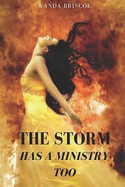 The Strom Has A Ministry Too by Wanda Br