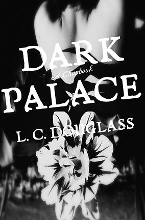 LC Douglass Dark Palace poems cover