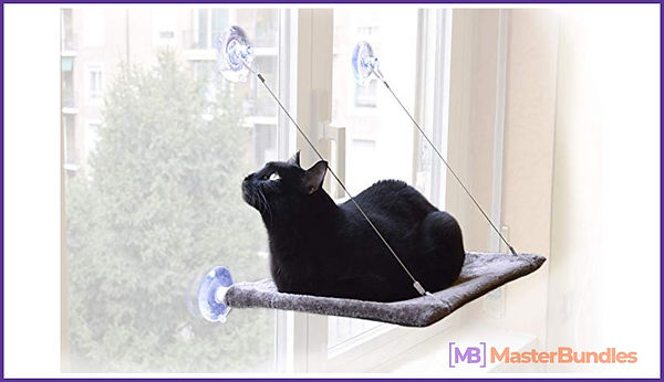 Best 40+ Gifts for Cat Lovers & Cat Moms in 2020. Things That Make Cats and Cat Lovers Happy