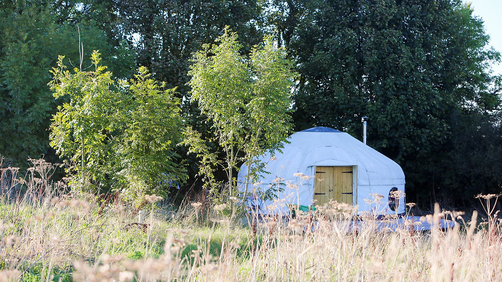 Retreat - 2 Spaces in Shared Luxury Yurt Accommodation Per Person