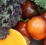 866x276.fit.AT16-VEG-Plants-Fruit Collec
