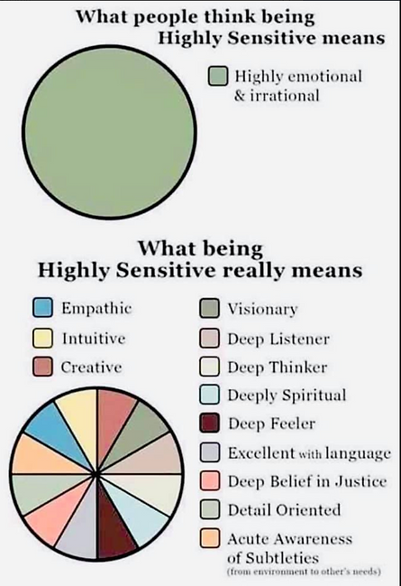 Highly Sensitive Persons.png