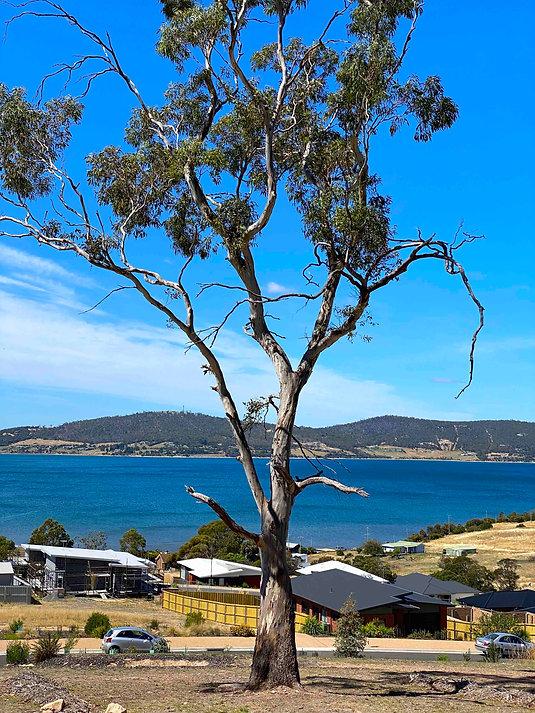 home building water views Hobart Tasmani