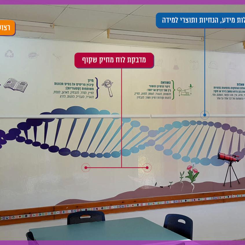 עיצוב סביבה לימודית בחדר מדעים. הלמידה מתקיימת במישורים שונים  ומגוונים