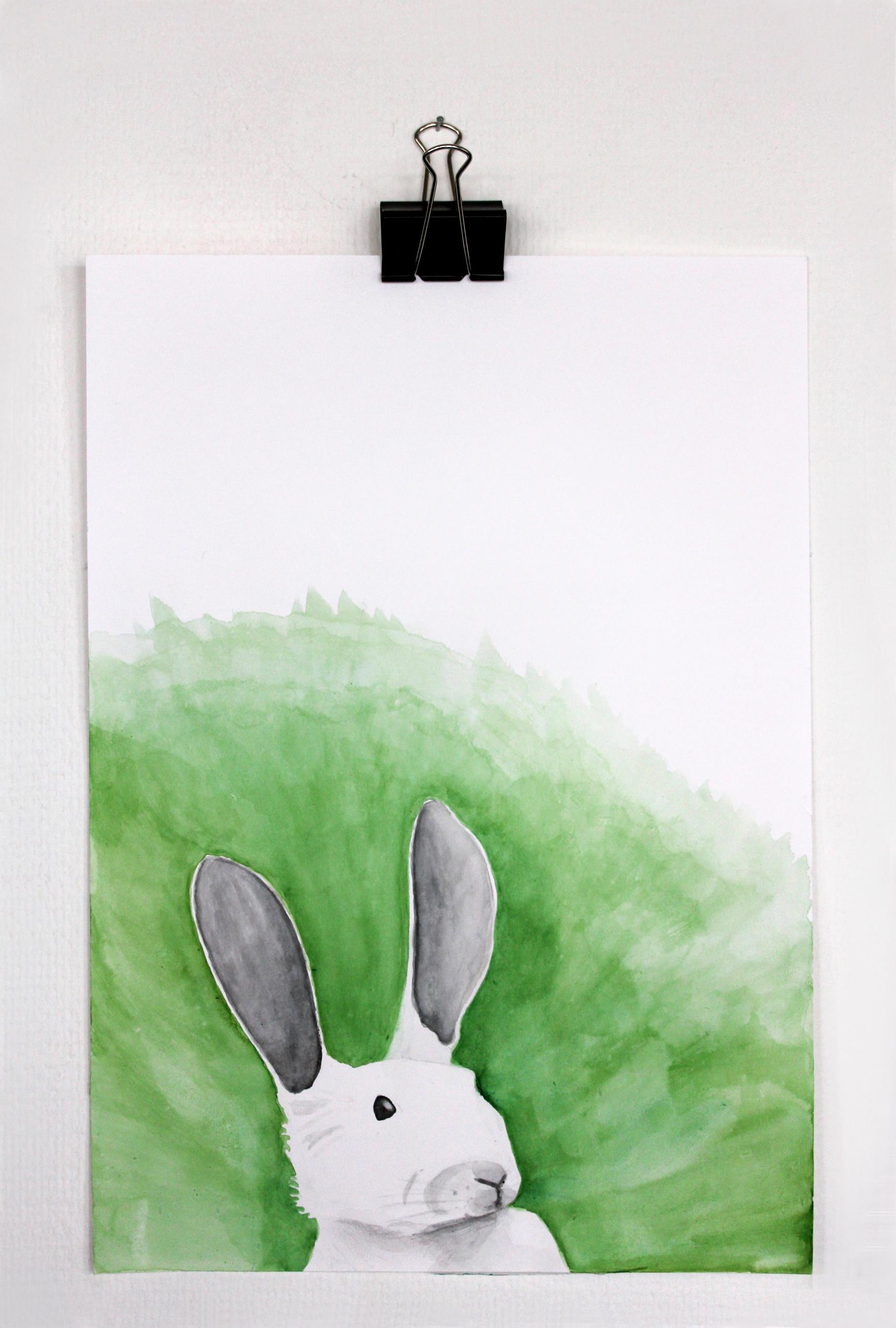 Hare_1