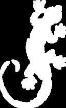 salamandre blanc.png