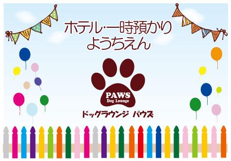 PAWS Dog Lounge