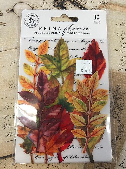 635664 - Prima Flowers