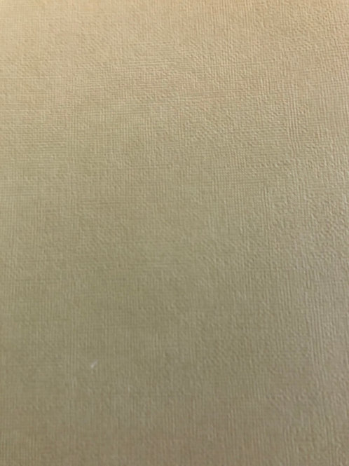 CD169 Sprout Textured 12x12 Cardstock