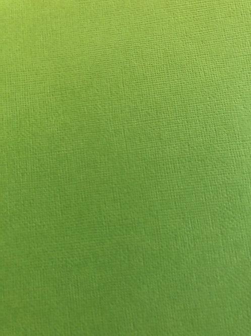 CD364 Guacamole Textured Cardstock