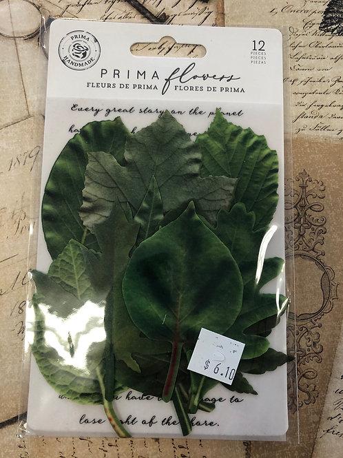 635619 - Prima Flowers