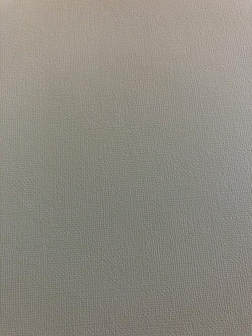 CD160 Pistachio Textured 12x12 Cardstock