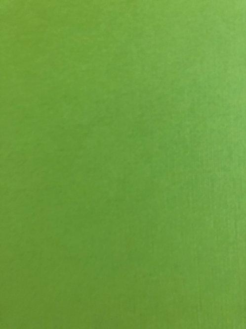 GT-10 Green Textured 12x12 Cardstock