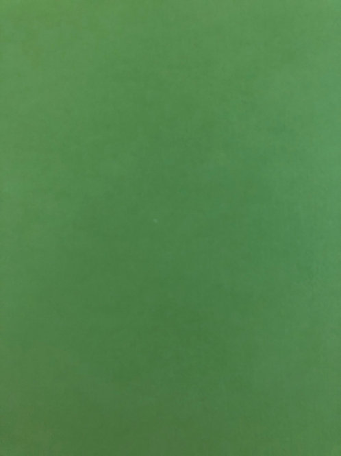 CD118 Fern Textured 12x12 Cardstock