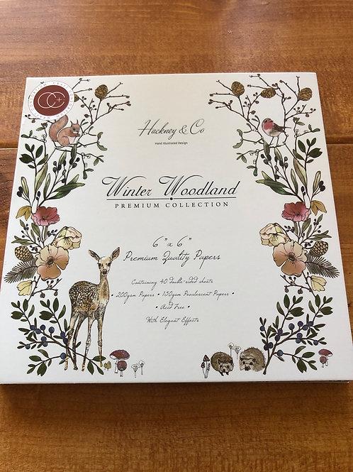 CCPPAD006B Winter Wonderland Paper Pad 6x6