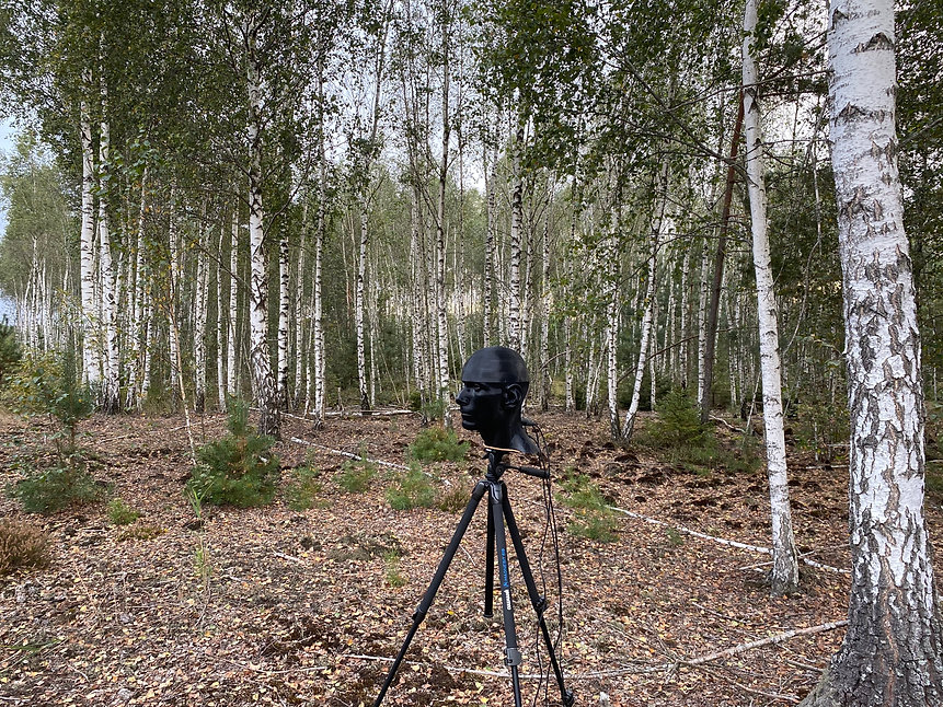 binaural microphone on tripod in the forest real recording