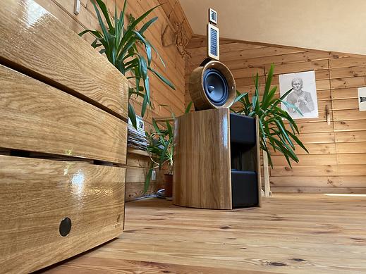 Incredible wooden open baffle speakers