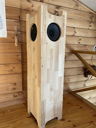 Single speaker stereo wooden and stylish with visaton BG20 drivers