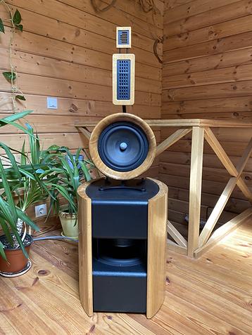 Custom made no baffle speakers