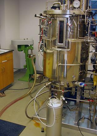 250L Bioreactor DF1.jpg