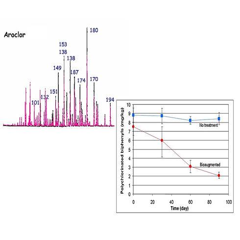 GC analysis.jpg