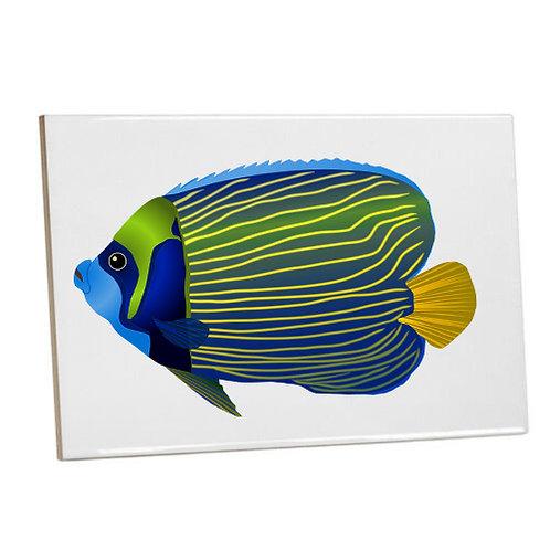 Bathroom wall Printed Tiles-Blue Aquarium Fish