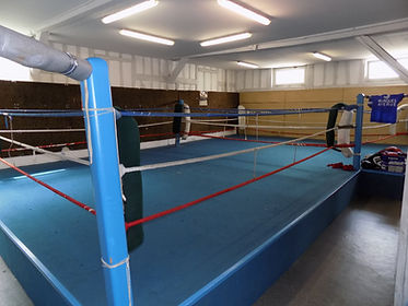 Stade Troyen Boxe Anglaise