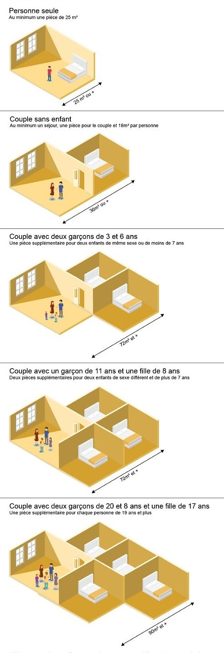 infographie surpeuplement_edited_edited_