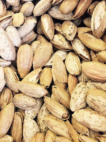 American Almond Sonara Large