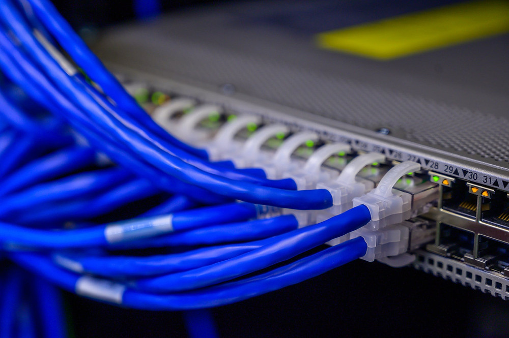 Blue network cables plugged into a switch