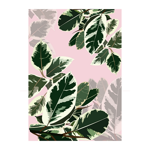 Rubber Plant Leaves Pattern Print
