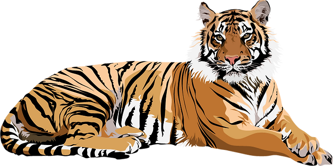 a backgroundless image of a illustrated tiger