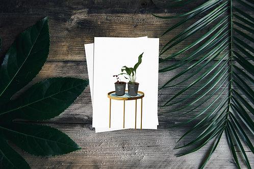 Pair of Plants Greetings Card