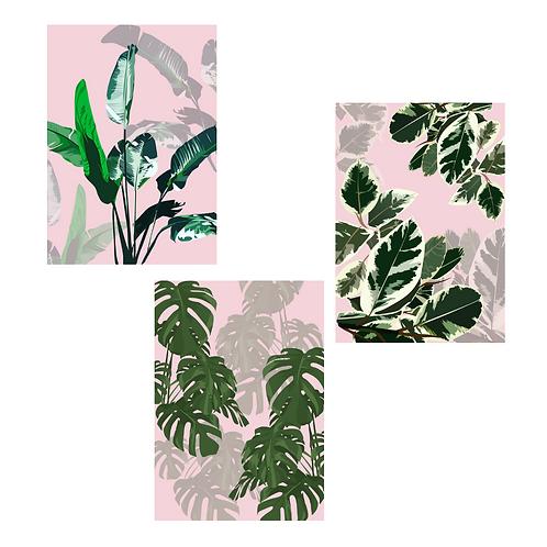Set of 3 Plant Pattern Prints