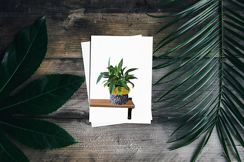 Crochet Potted Plant Greetings Card