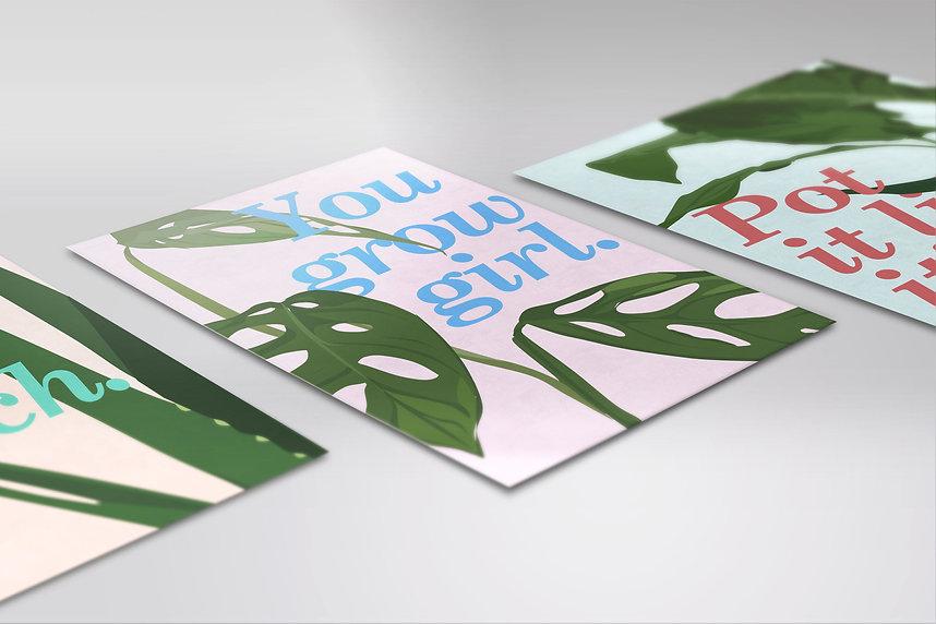 Plant Trio - Laying Down 3.jpg
