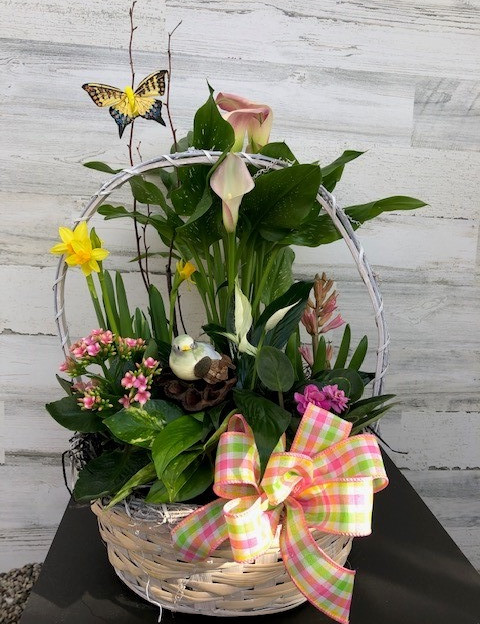 Blooming Basket with bulb plants