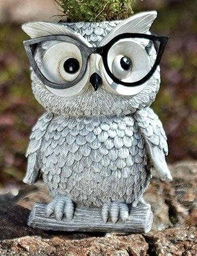 Owl Planter with glasses