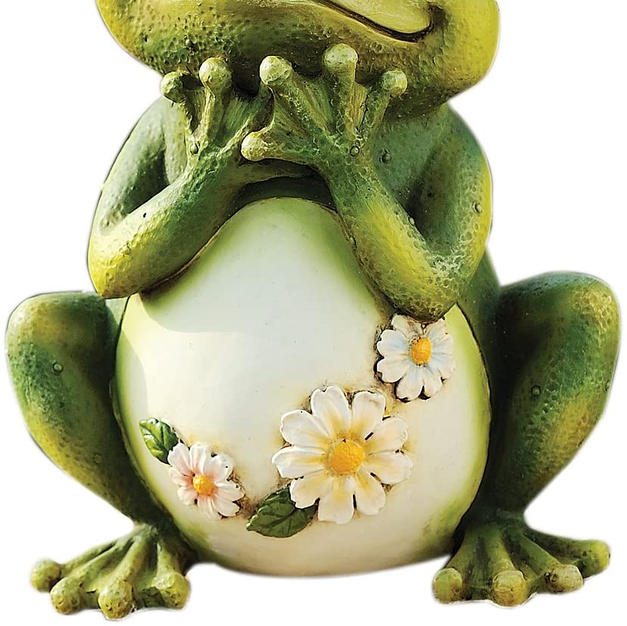 Painted frog with daisy