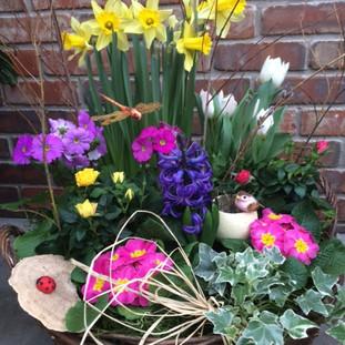 Blooming Basket Deluxe