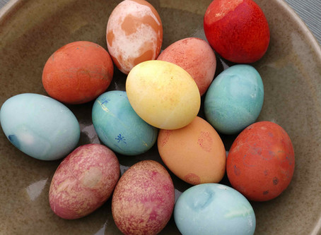"""The Grand Easter """"Eggs-Periment"""" of 2019"""