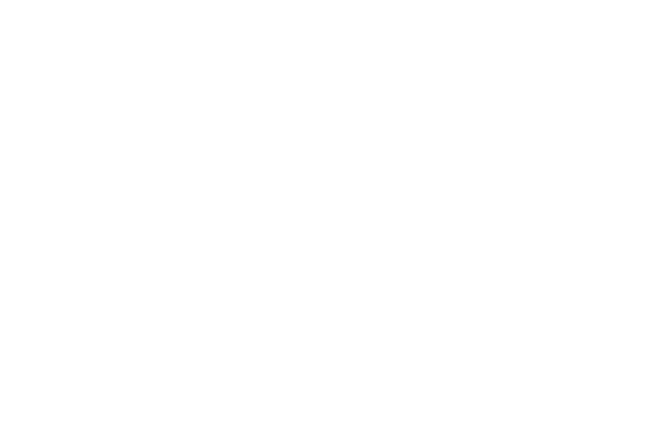 Squiggle_white.png